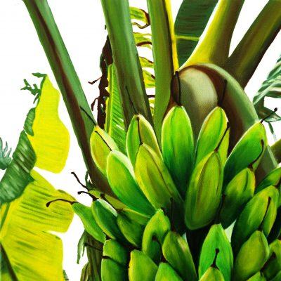 banana_1_1