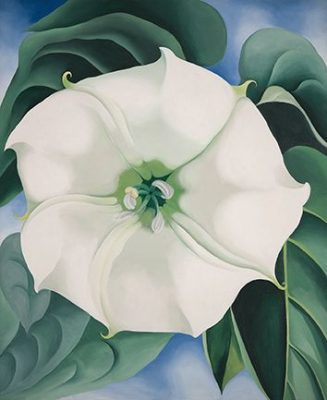 georgia_okeeffe_white-flower-no-1